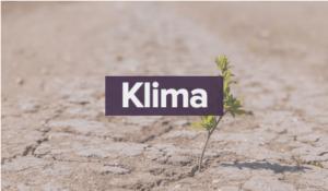 Wahlcheck Klima